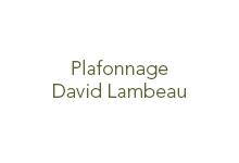 PLAFONNAGE LAMBEAU David
